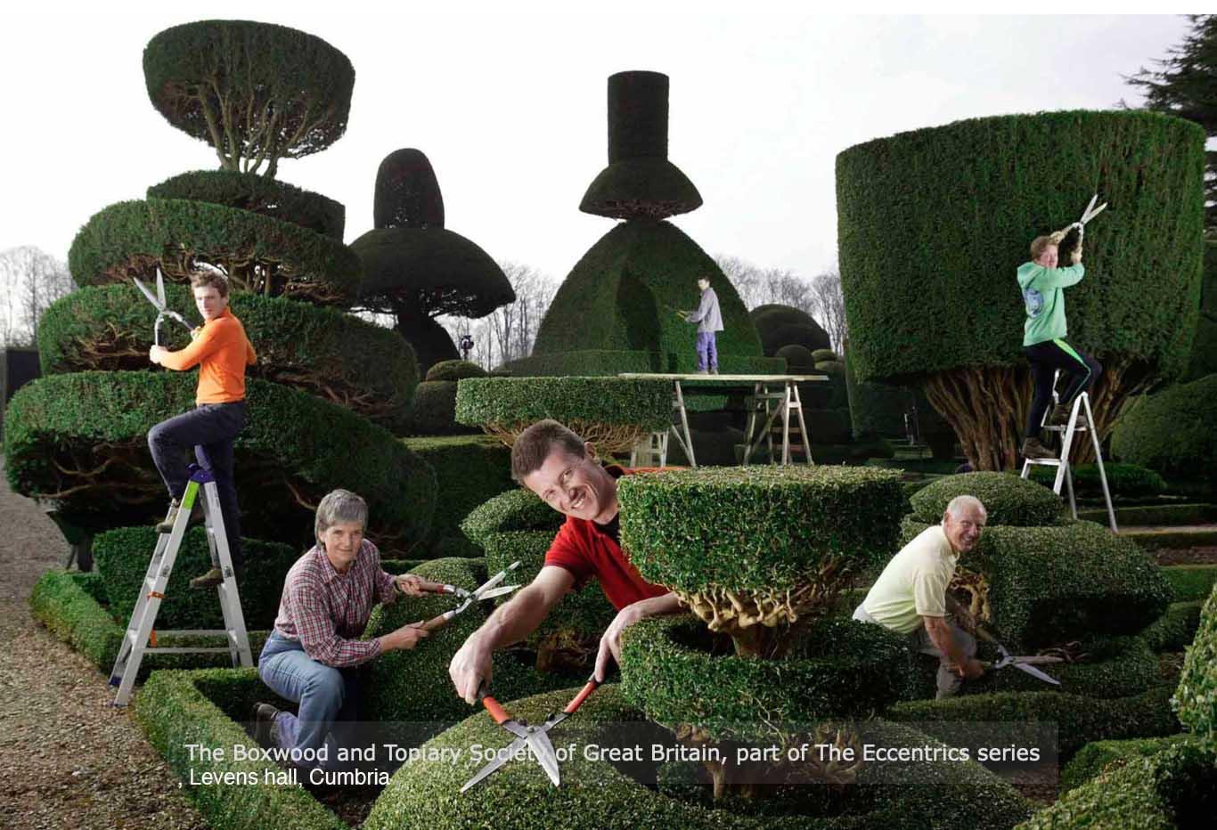 Topiary at Levens hall, Cumbria