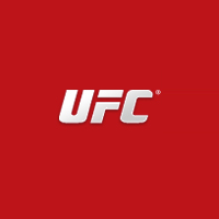 UFC VIP Packages