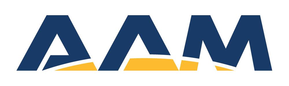 AAM Group Logo