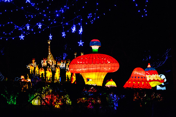 Magical Lantern Festival Yorkshire