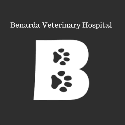 Benarda Veterinary Hospital