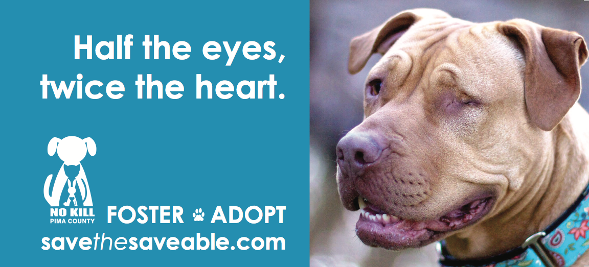 Foster or Adopt. Save the Saveable.