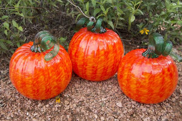 Vivid Bright Orange Pumpkins