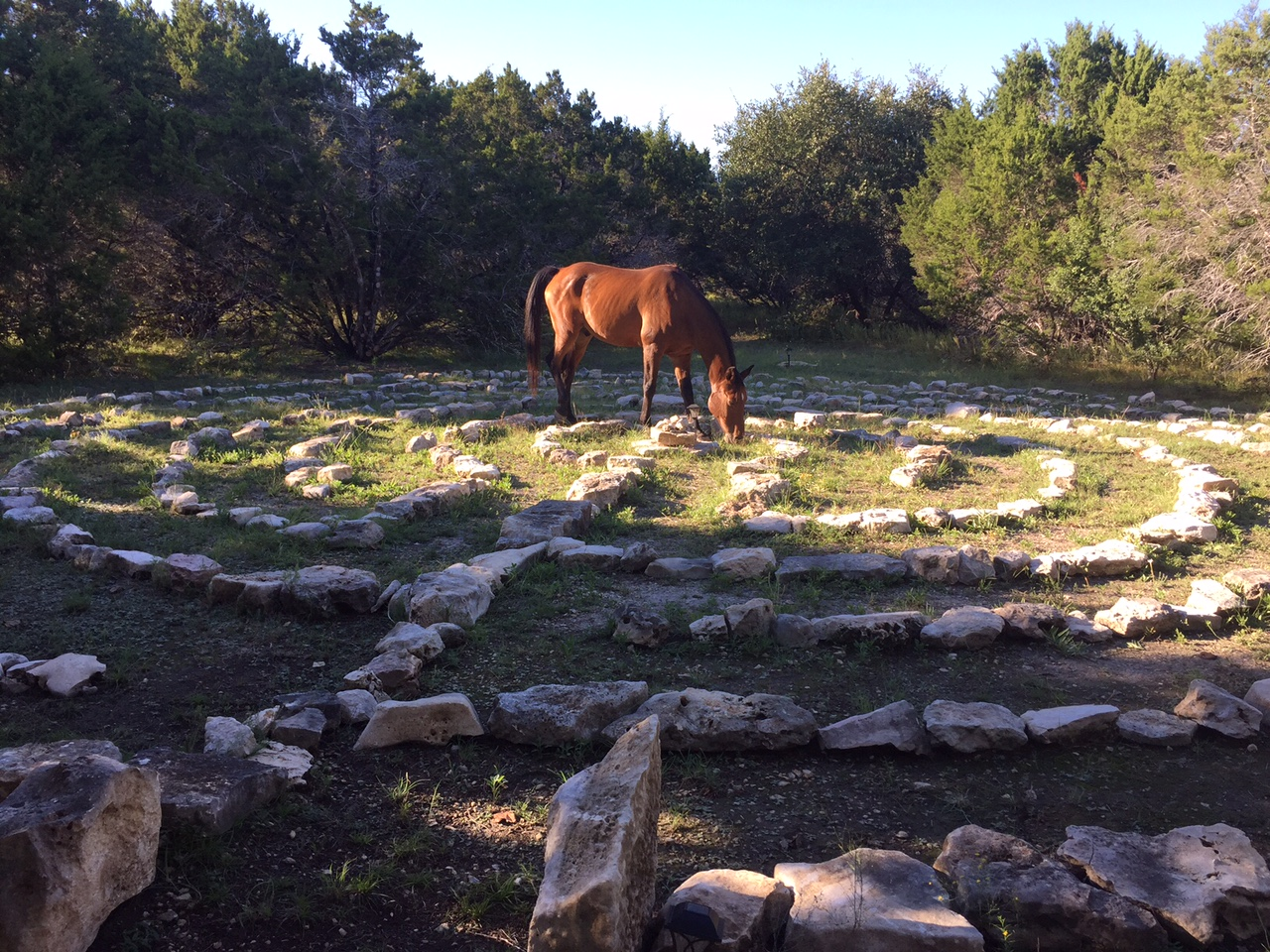 Labyrinth and horse
