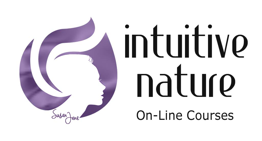 Intuitive Nature logo for PGE