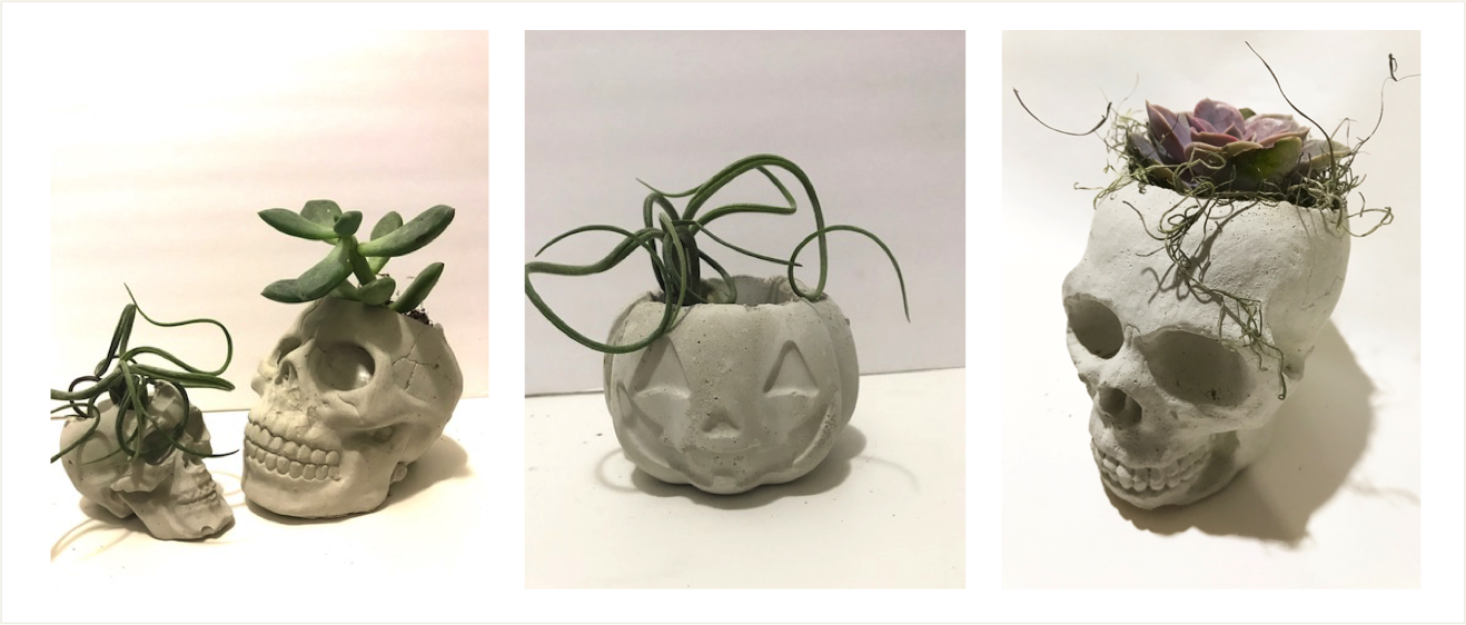concrete containers for halloween