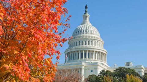 Washington DC autumn