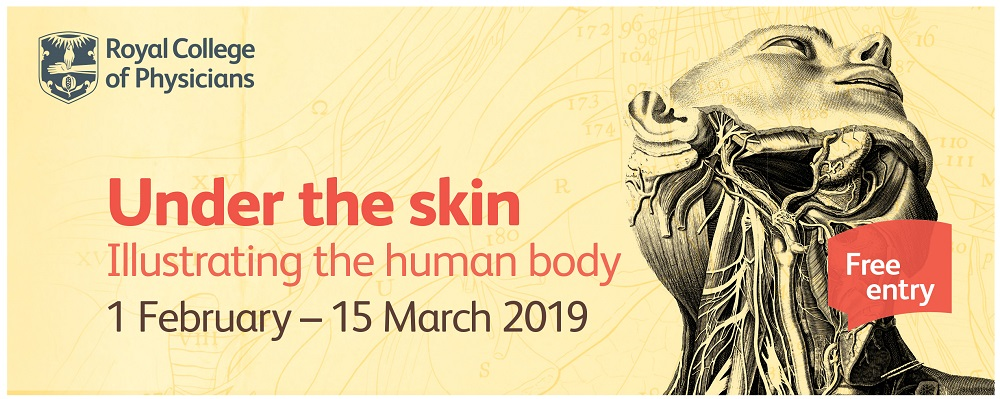 Under the skin: Museum Late | RCP Museum