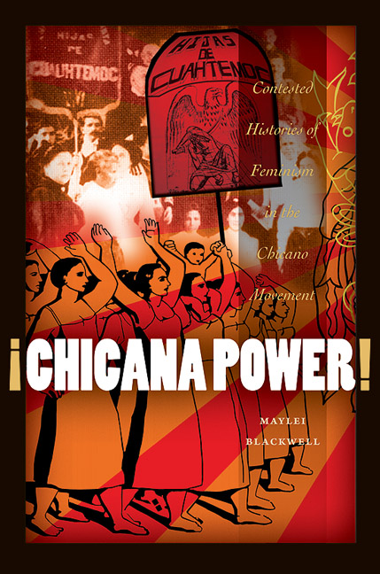 Chicana Power Book image