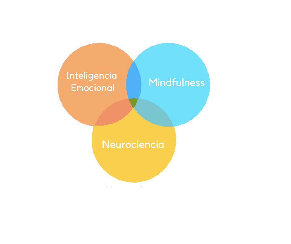 Mindfulness Inteligencia Emocional Neurociencia