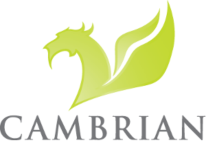 Cambrian Solutions Logo