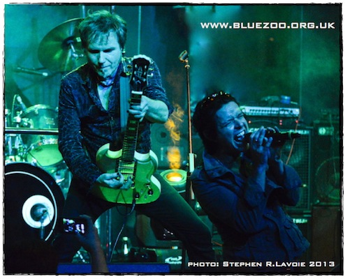 Blue Zoo Live in Manila