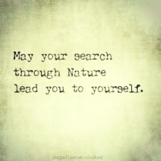 search through nature