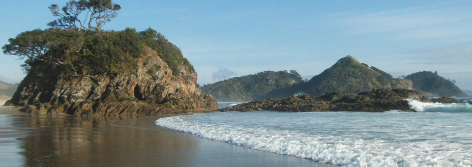 Great Barrier Island waves