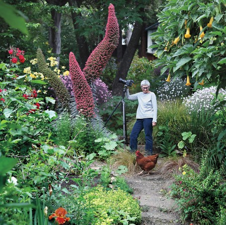Marion Brenneru0027s Photographs Of Landscape Design Have Appeared  Internationally In Magazines, Including Gardens Illustrated, T, The New  York Times Design ...
