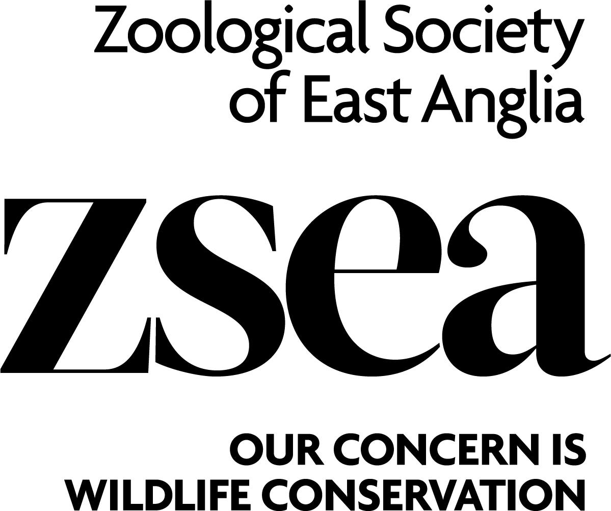 zsea logo postive stacked