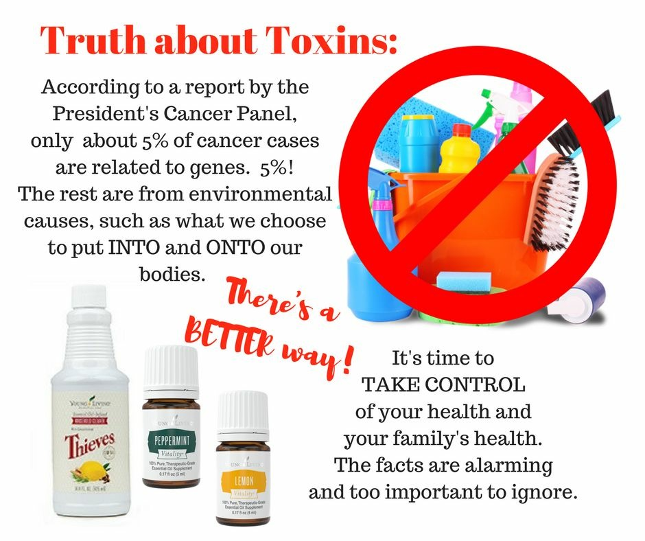 Toxic Free Living Replacing Toxic Chemicals With Natural