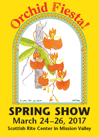 Spring Show Poster