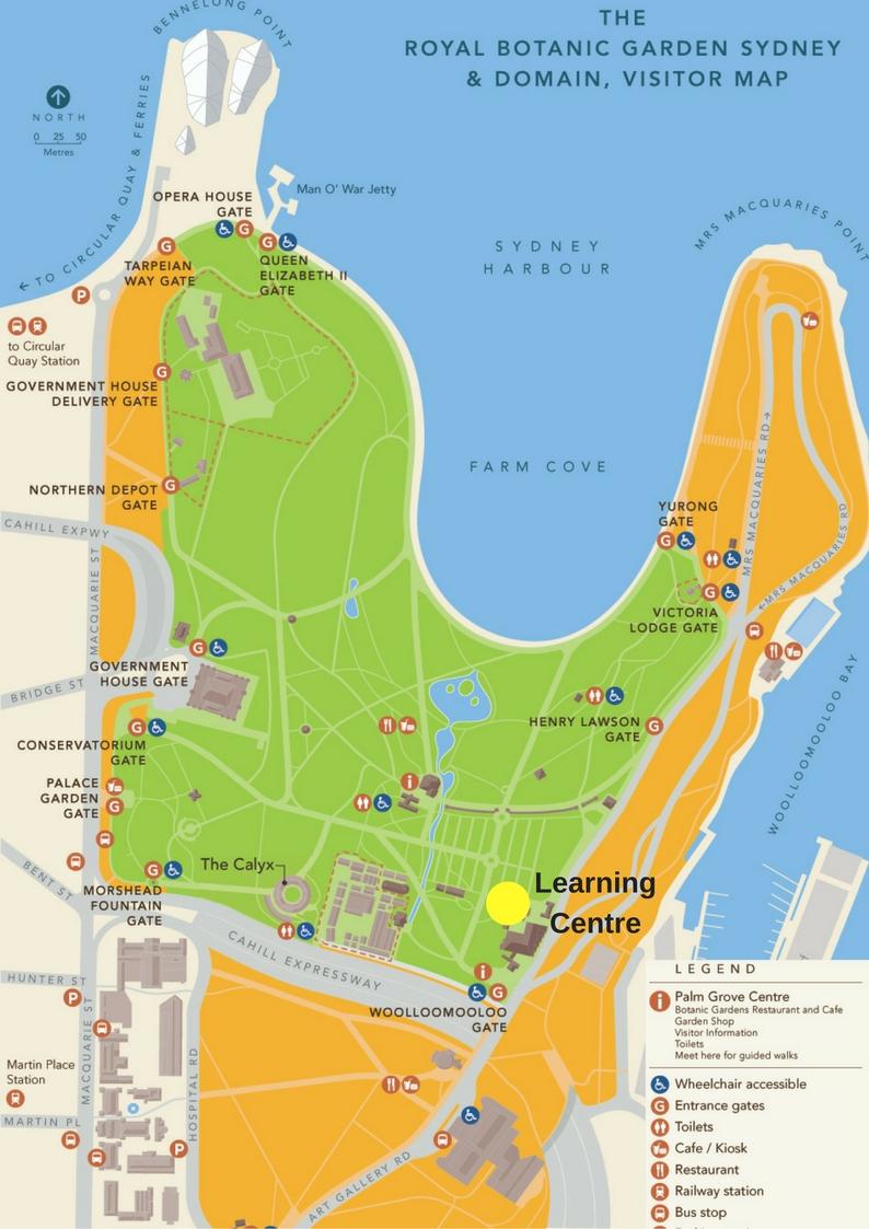 Aboriginal weaving workshop tickets multiple dates for Landscape design courses sydney