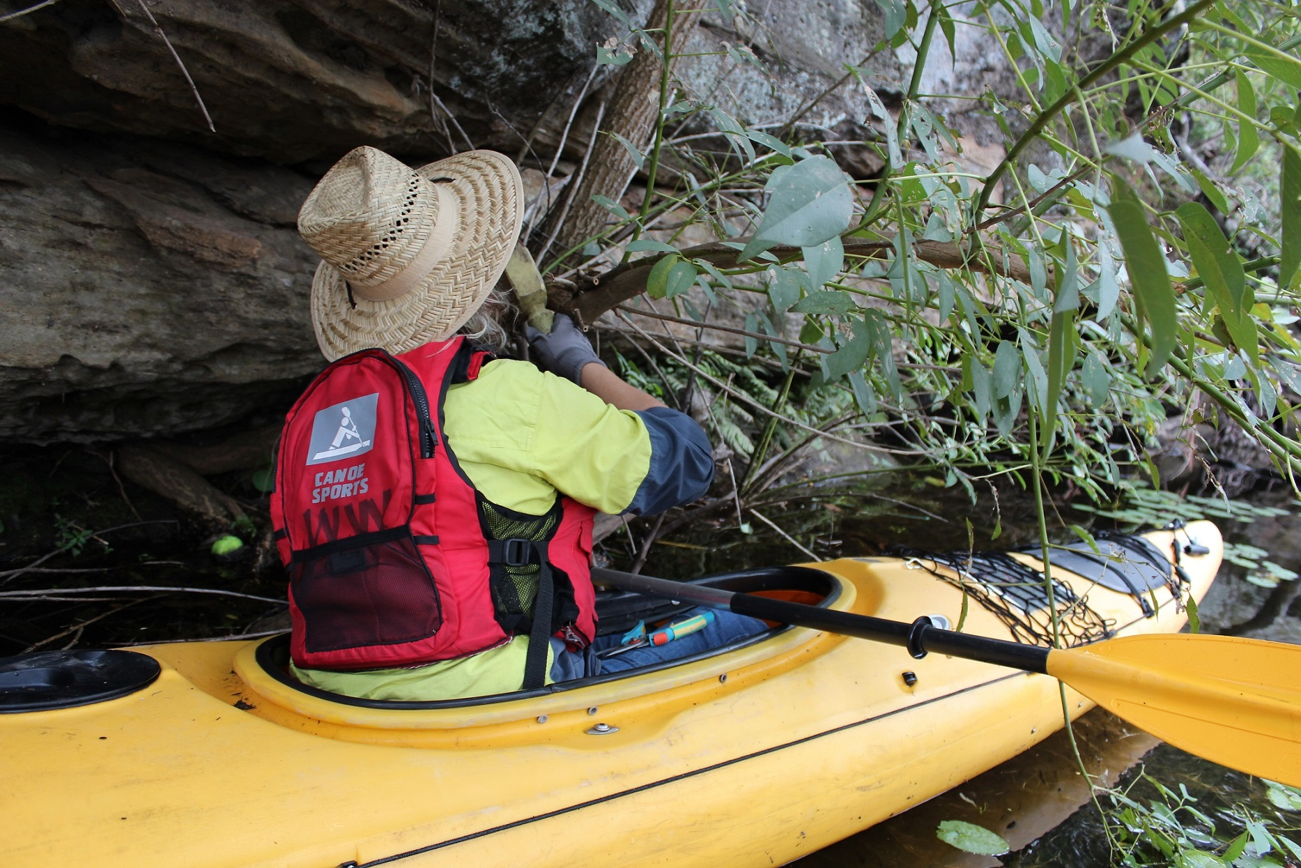 Conservation Kayaking