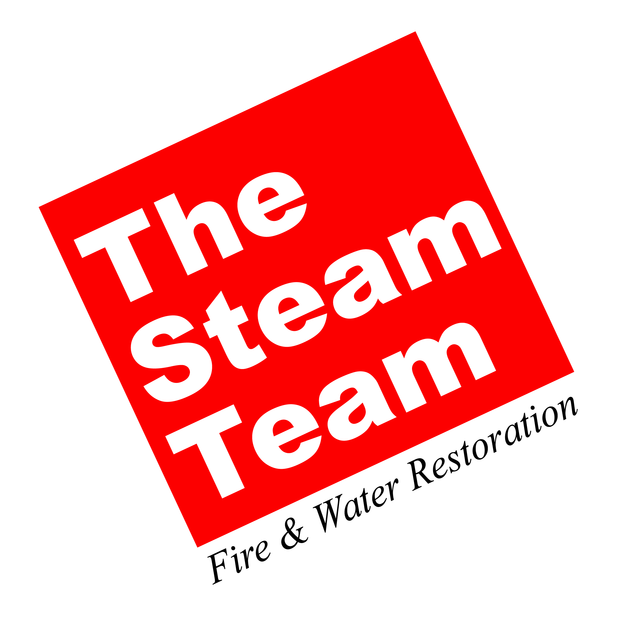 The Steam Team Logo