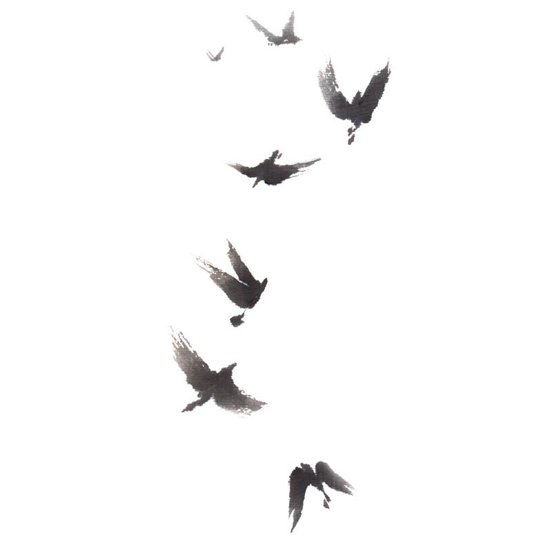 Birds of Peace flying