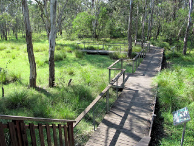 Lorikeet Boardwalk at Nurragingy reserve