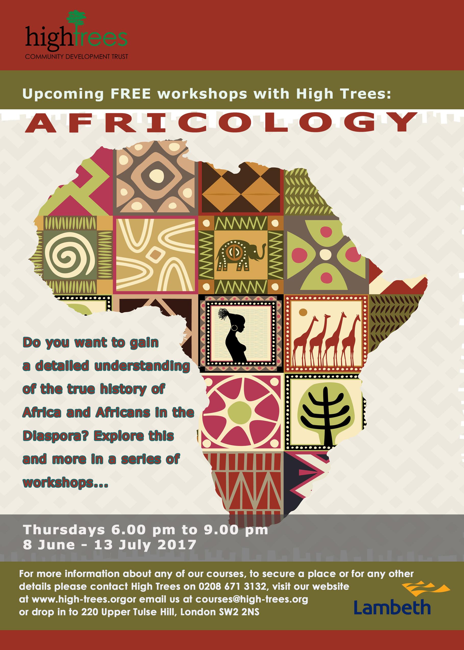 Africology flyer
