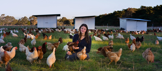 Madelaine seated with chickens in her lap and surrounding her, in a paddock in front of the mobile chicken houses.