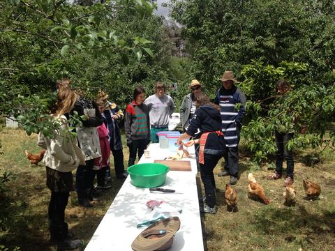 Madelaine holding a workshop in the orchards at Hollyburton Park surrounded by workshop attendees, chickens and fruit trees.