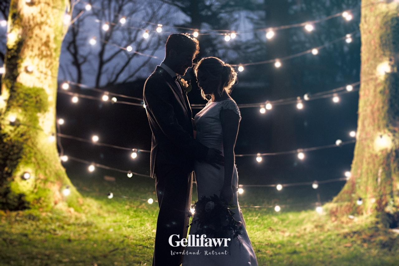 Gellifawr woodland shoot