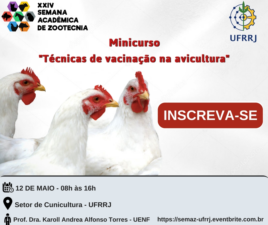 Vacinação na Avicultura