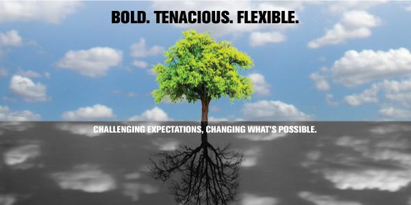 Bold. Tenacious. Flexible.