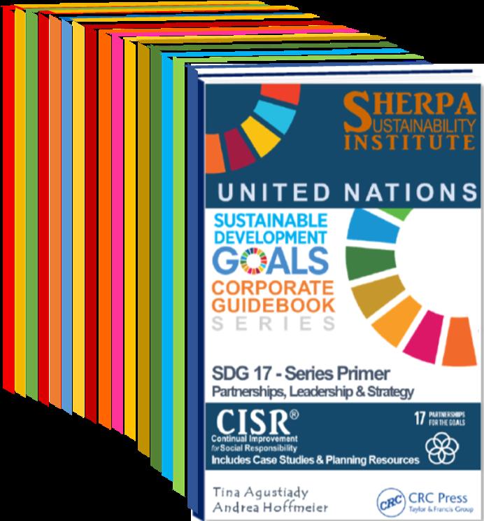 SDG Book Cover MockUp