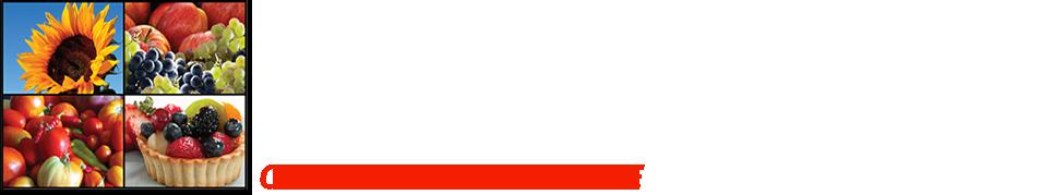 Central Farm Markets logo