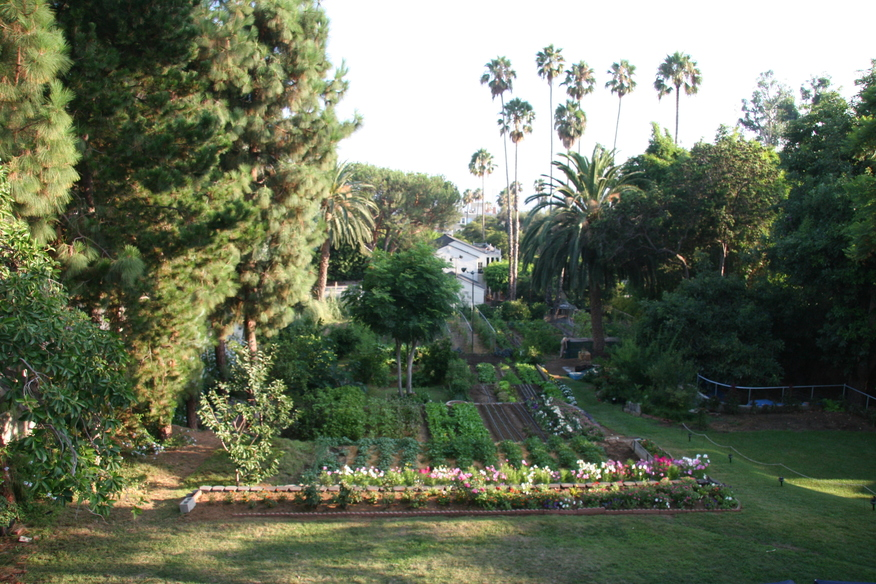 Hollywood Garden 2