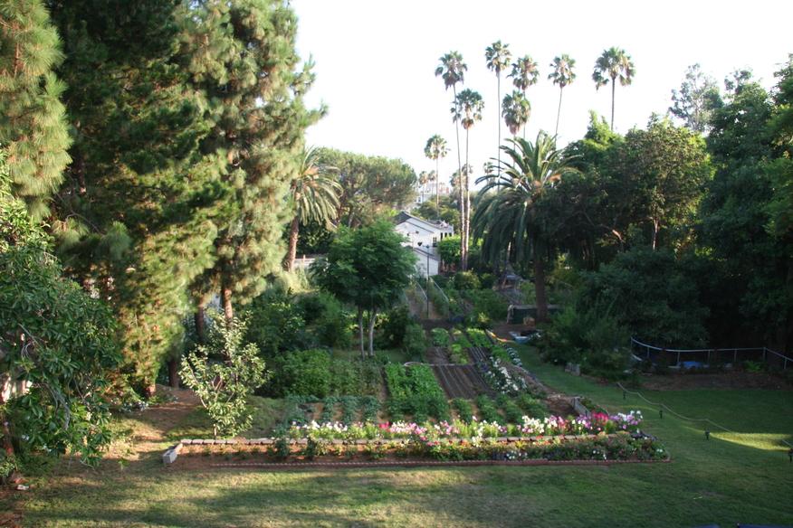 Hollywood Garden 2