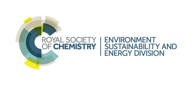 Royal Society of Chemistry - Environment sustainability and energy division