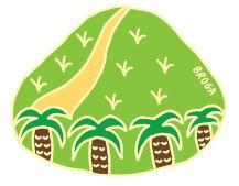 pin design