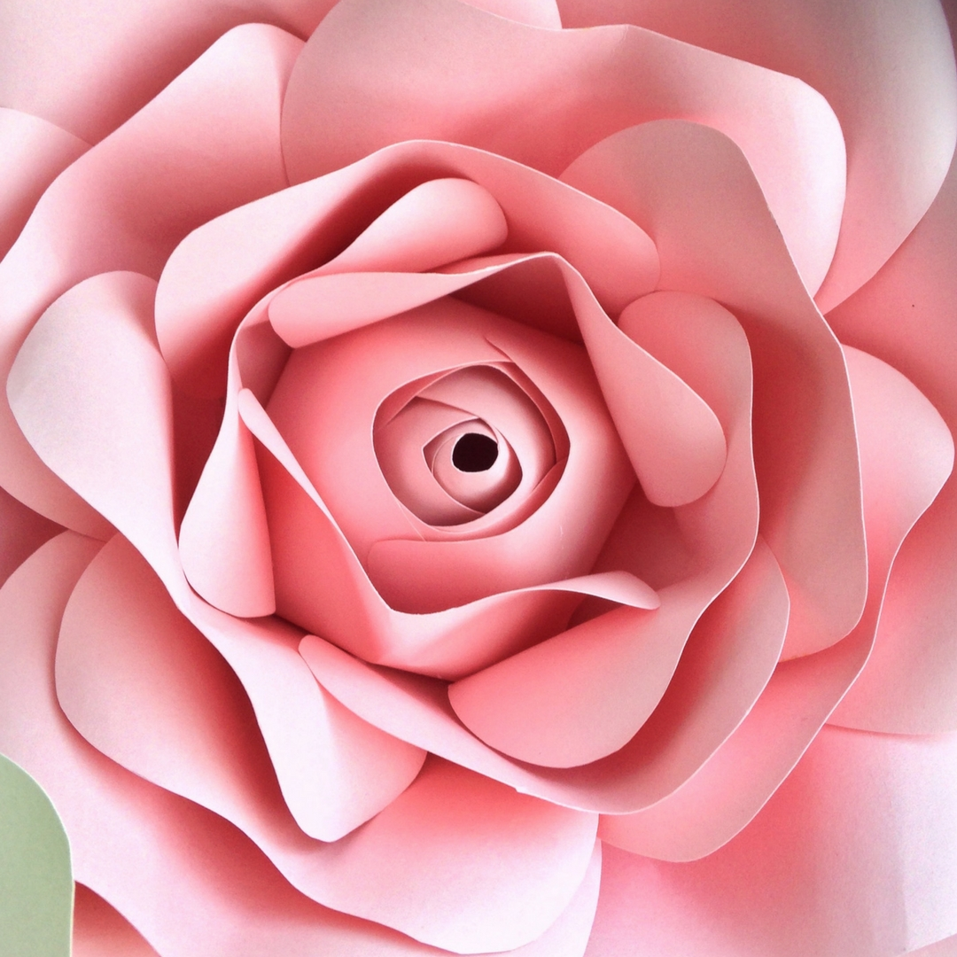 Flipside Bride Giant Paper Flowers - baby pink rose