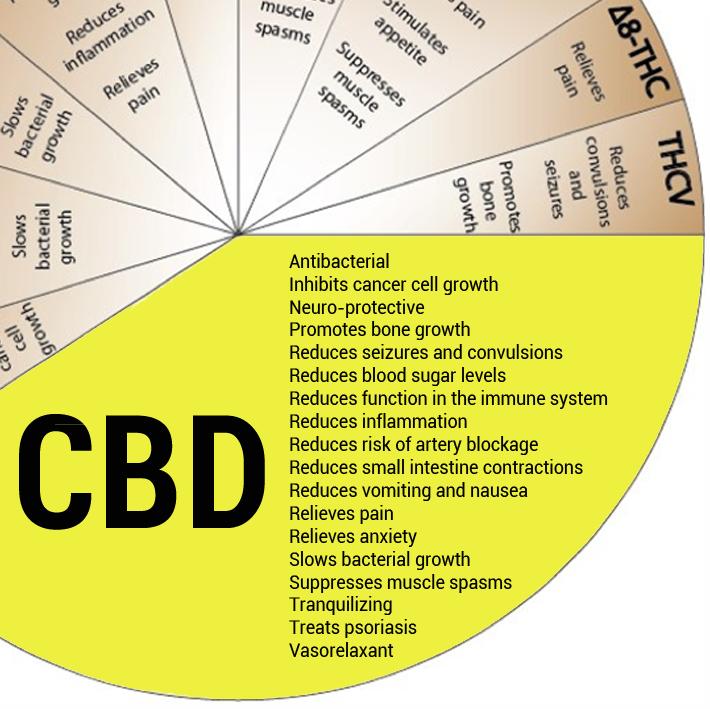 cbd wheel