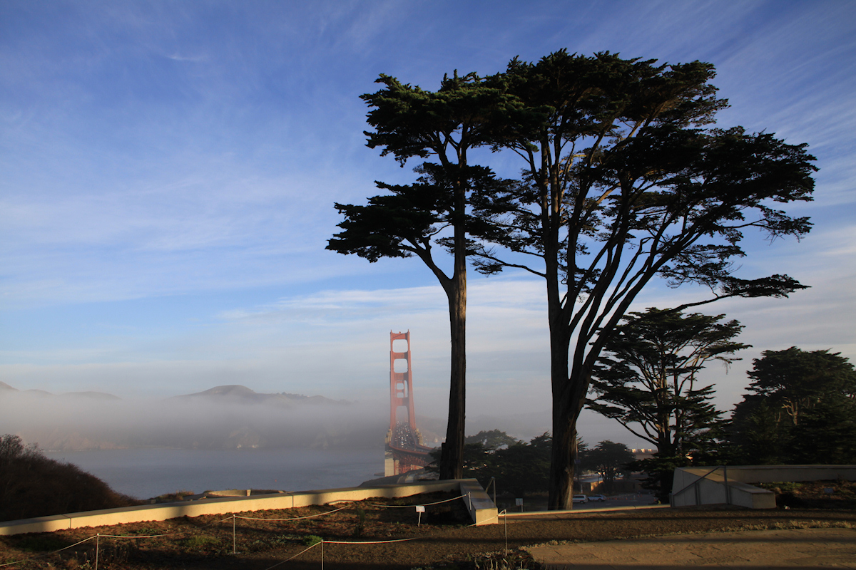 420Friendly Presidio Walking Tours