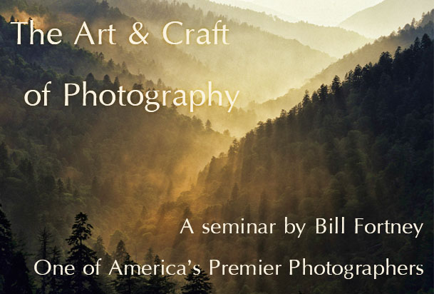 The Art & Craft of Photography title image