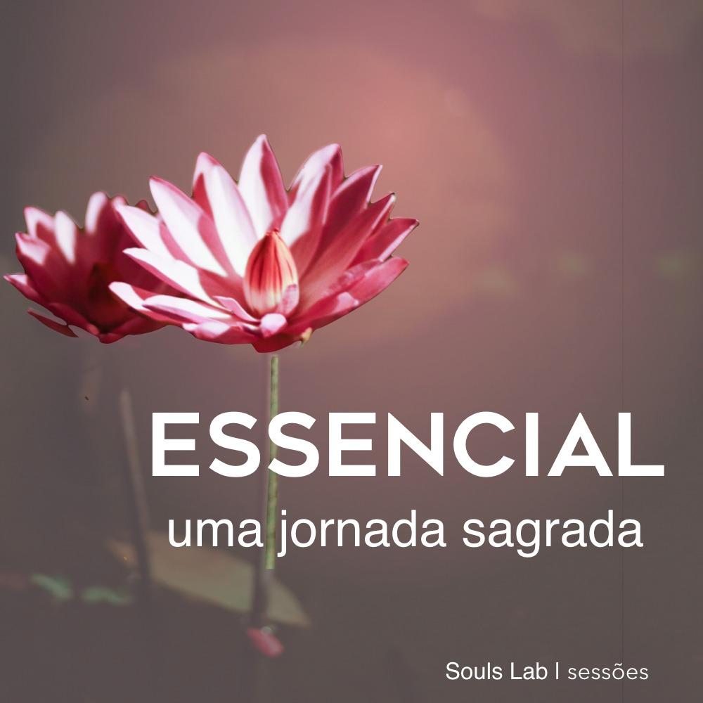 Essencial 01
