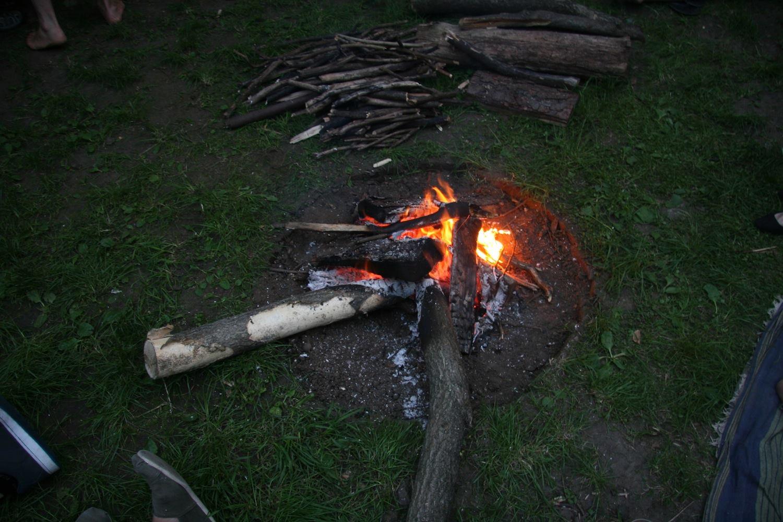 Phytology Campfire