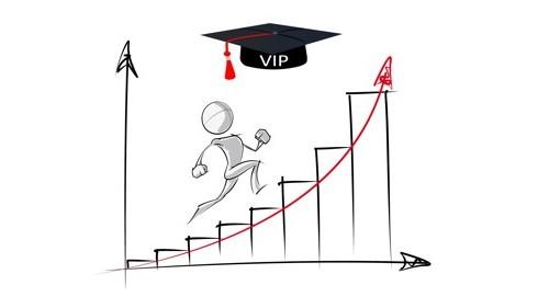 VIP-Training