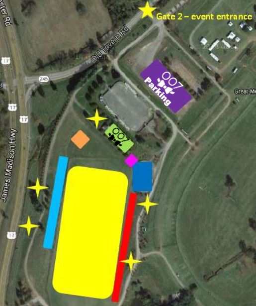Polo Classic Layout - 007
