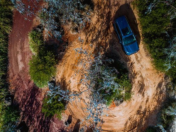 Trail Overhead