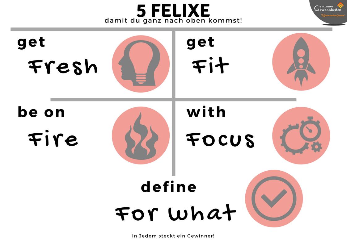 5 FELIXE - Uebersicht