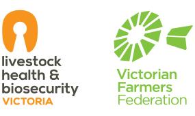 LHBV + VFF logo